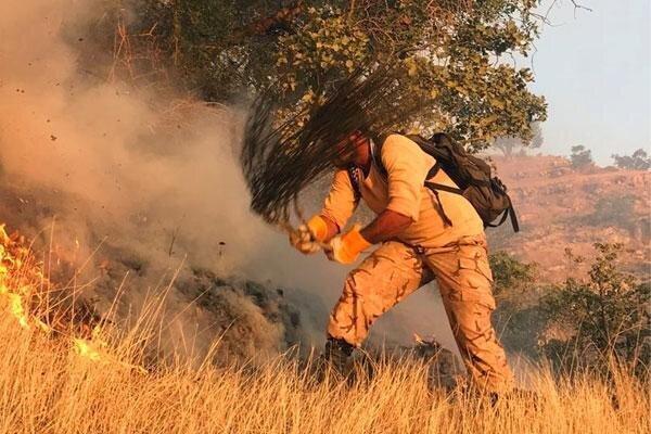 آتش سوزی چه بلایی سر جنگل های زاگرس می آورد؟