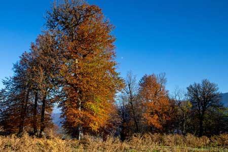 پاییز سال جاری، گرمتر از حالت عادی است ، احتمال کاهش 30 درصدی بارش ها